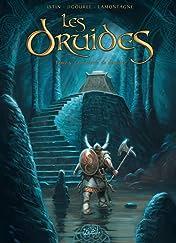 Les Druides Tome 5: La pierre de destinée