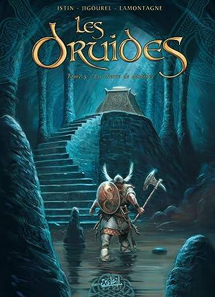 Les Druides Vol. 5: La pierre de destinée