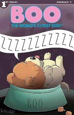 Boo, The World's Cutest Dog #1