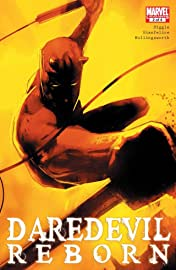 Daredevil: Reborn #2 (of 4)