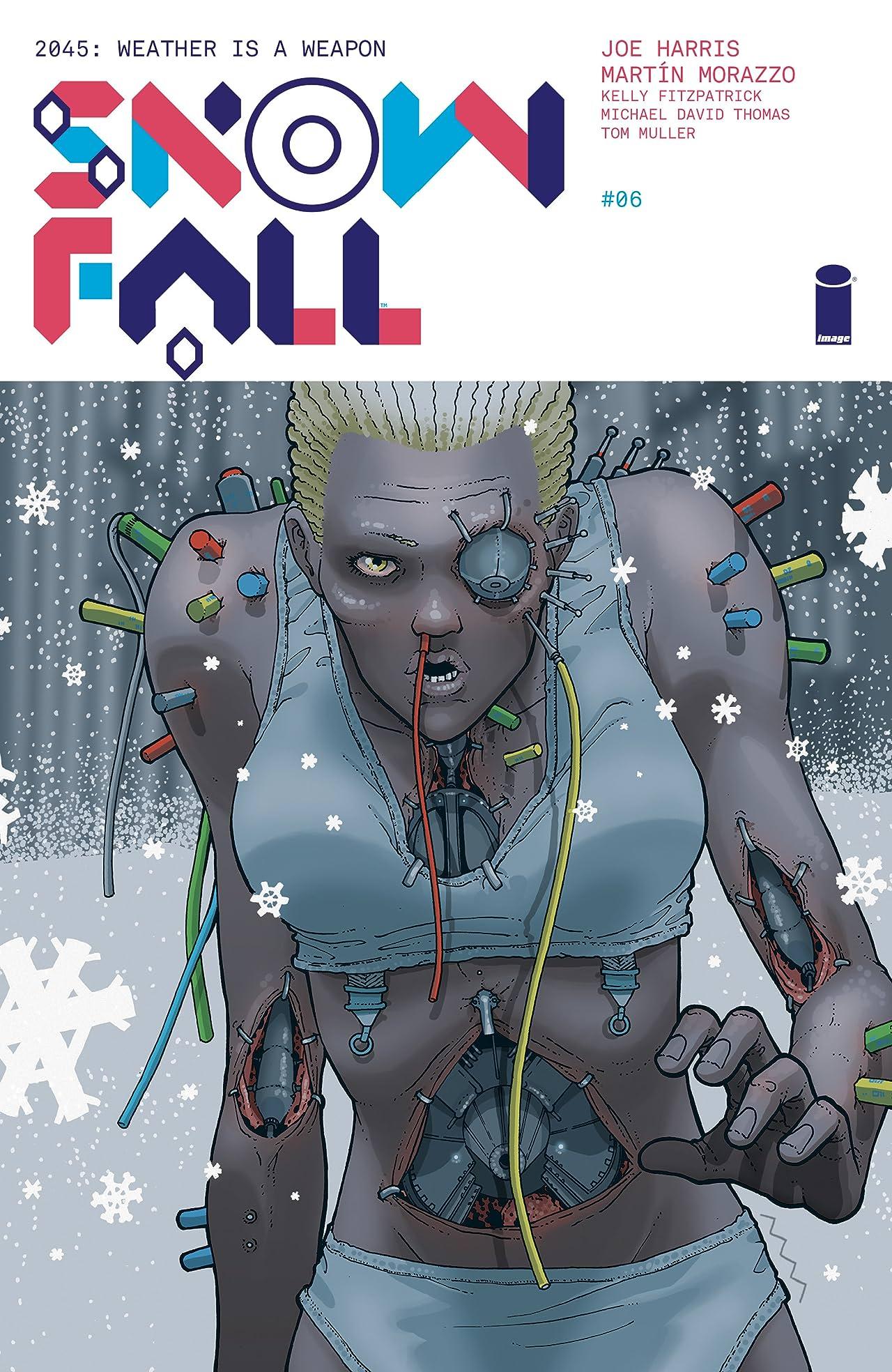 Snowfall #6