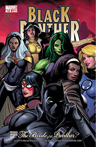 Black Panther (2005-2008) #14