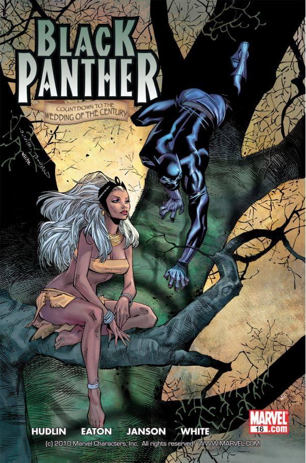 Black Panther (2005-2008) #16