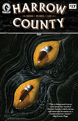 Harrow County No.17