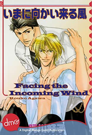 Facing the Incoming Wind: Preview