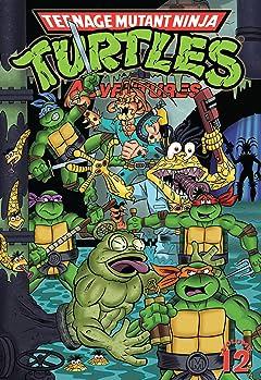 Teenage Mutant Ninja Turtles Adventures Vol. 12