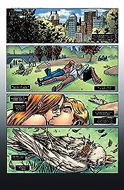 Daredevil Collection Vol. 6: Daredevil Contro Punisher