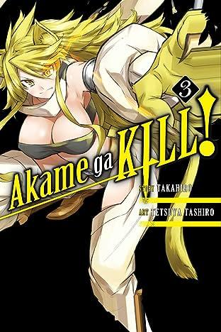 Akame ga KILL! Vol. 3