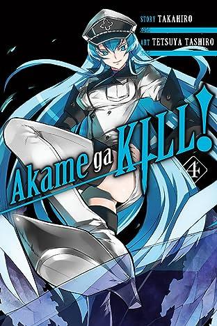 Akame ga KILL! Vol. 4