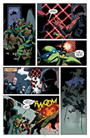 Teenage Mutant Ninja Turtles Universe #4
