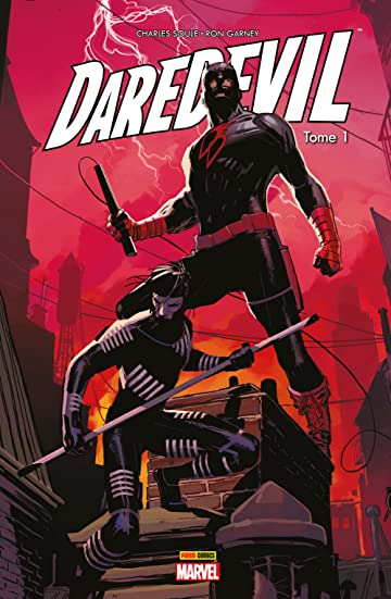 Daredevil Vol. 1: Un témoin gênant