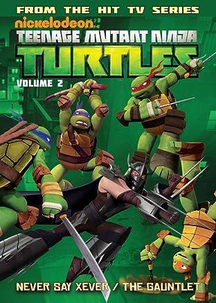 Teenage Mutant Ninja Turtles: Animated Tome 2: New Friend, Old Enemy