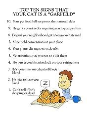 Garfield's Top Ten Tom(cat) Foolery
