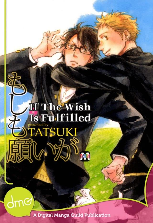 If The Wish Is Fulfilled: Preview