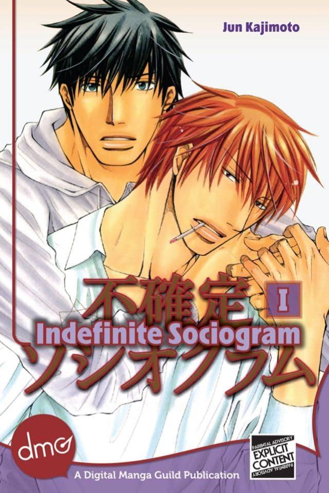 Indefinite Sociogram Vol. 1: Preview
