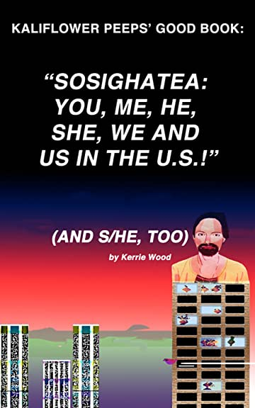 COMIX 4 COMPUTERS. Vol. 1: SOSIGHATEA: FOR YOU, ME, SHE, HE, WE AND US IN THE U.S.!