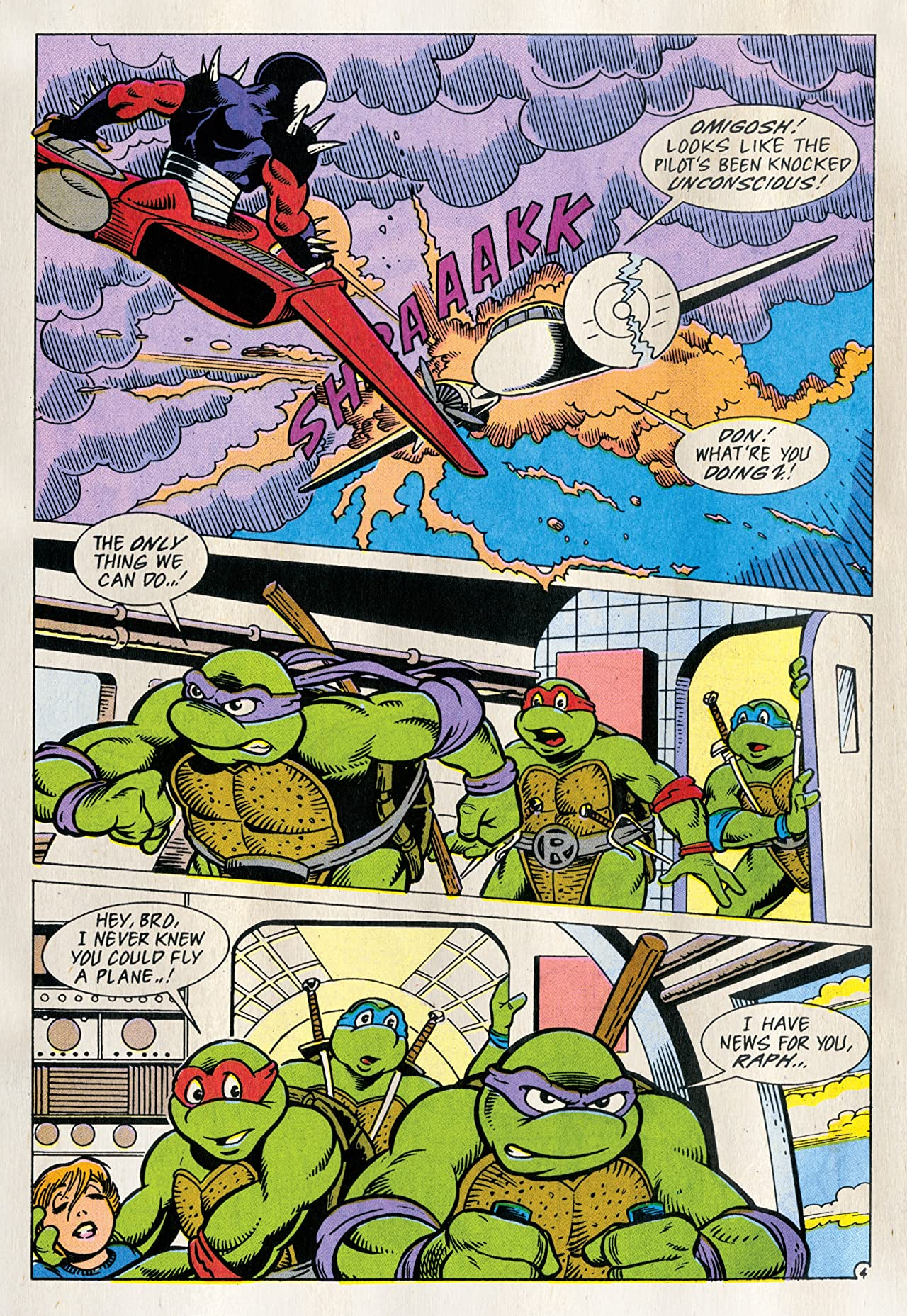Teenage Mutant Ninja Turtles Adventures Vol. 13