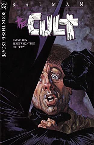 Batman: The Cult #3 (of 4)