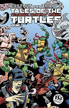 Teenage Mutant Ninja Turtles: Tales of the TMNT Vol. 3