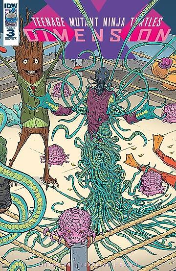 Teenage Mutant Ninja Turtles: Dimension X #3