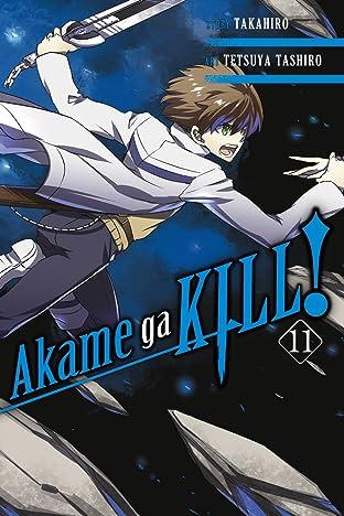 Akame ga KILL! Tome 11