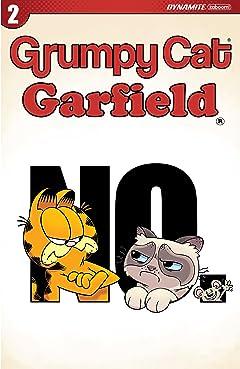 Grumpy Cat/Garfield #2