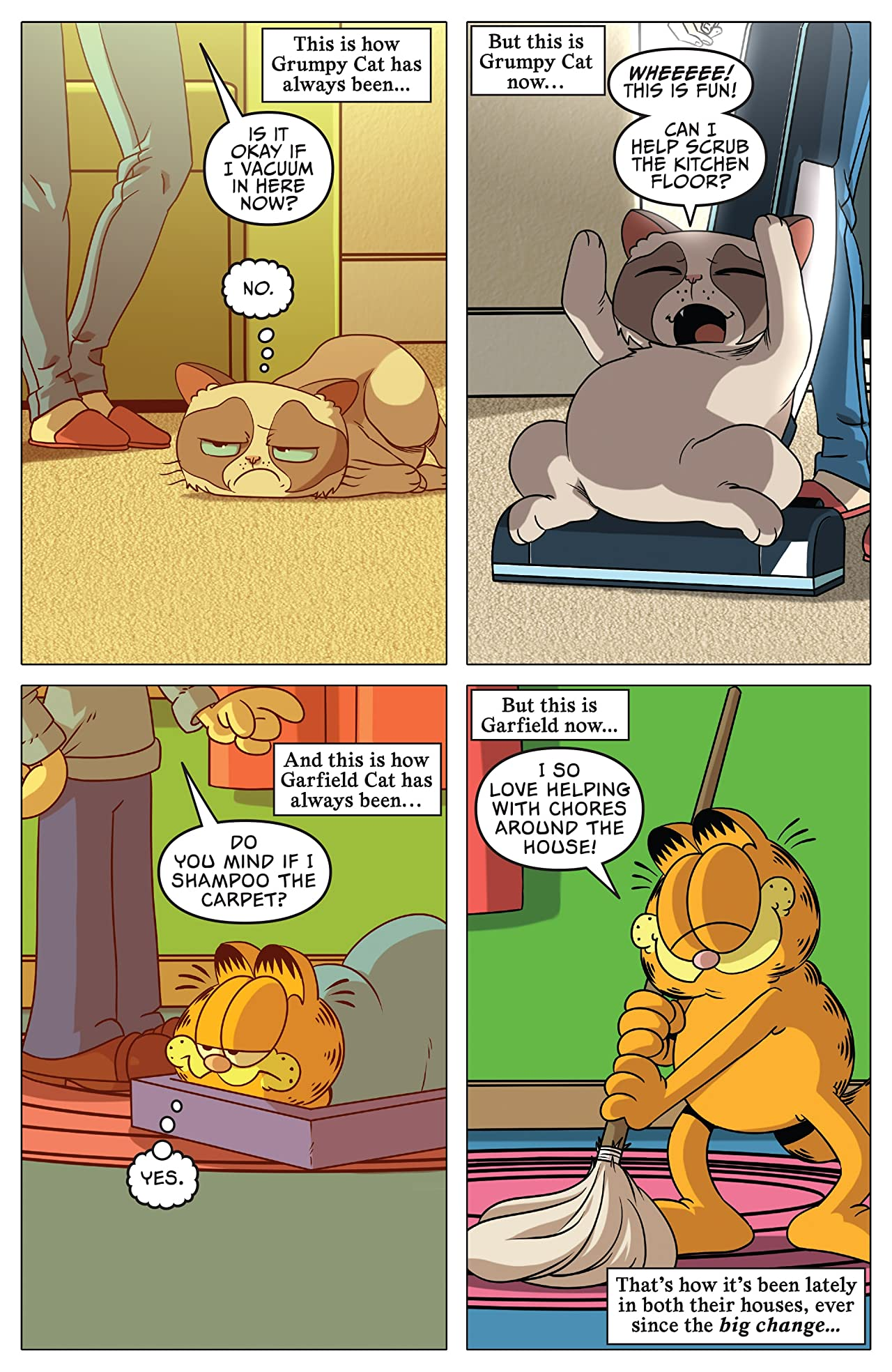 Grumpy Cat/Garfield #3