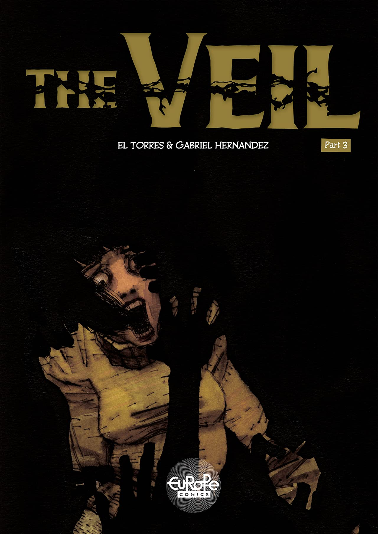 The Veil Tome 3