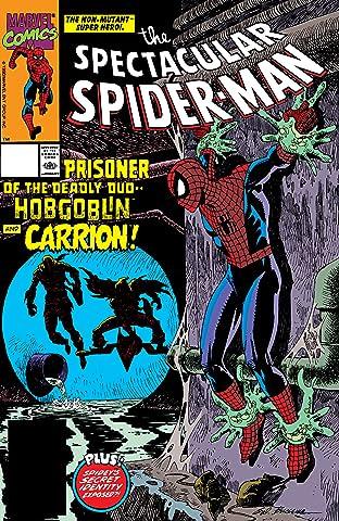 Peter Parker, The Spectacular Spider-Man (1976-1998) #163
