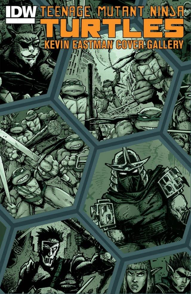 Teenage Mutant Ninja Turtles: Kevin Eastman Cover Gallery