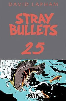 Stray Bullets #25