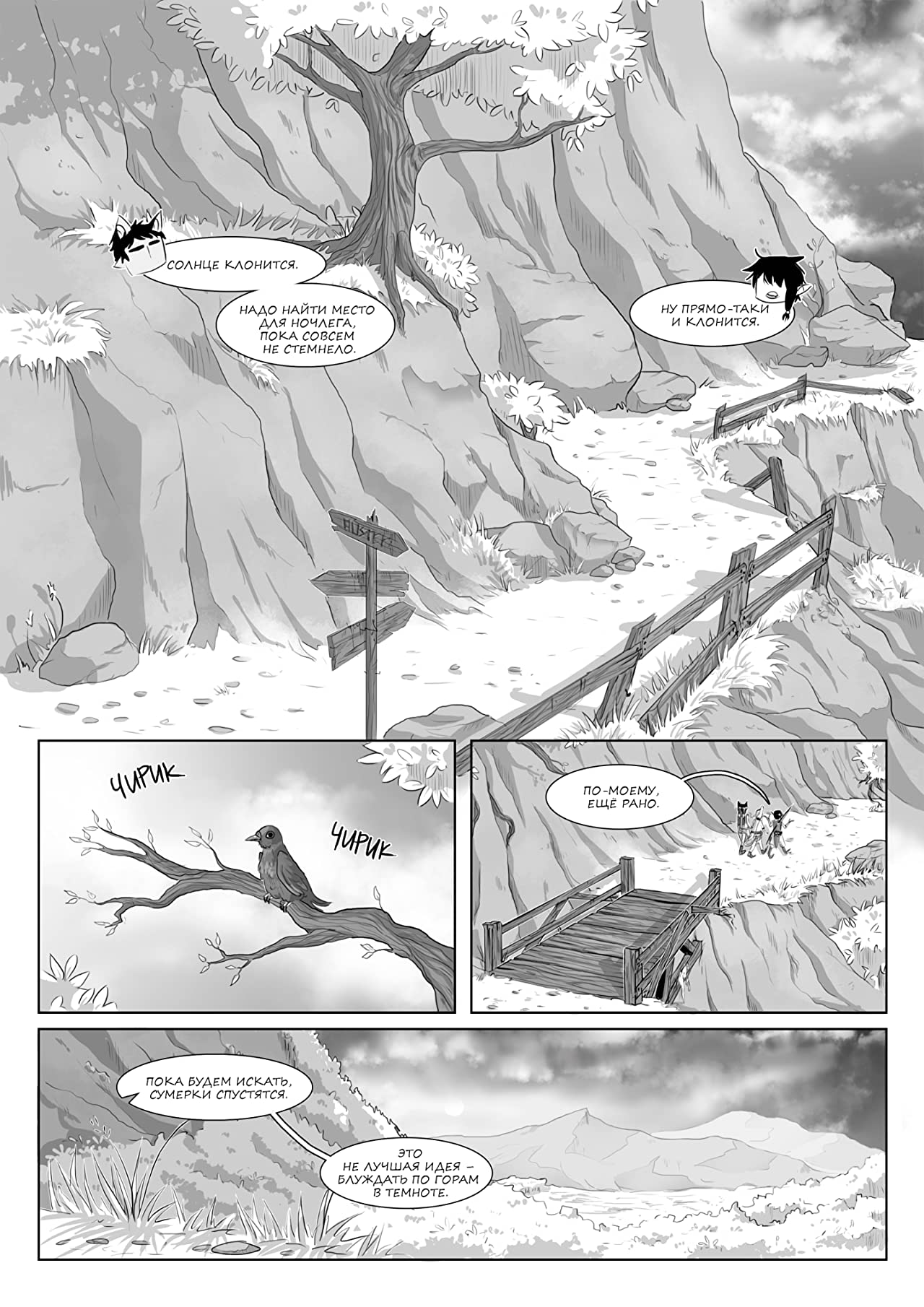 Auster #5