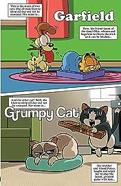 Grumpy Cat/Garfield