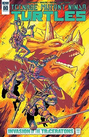 Teenage Mutant Ninja Turtles #80