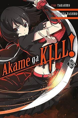 Akame ga KILL! Vol. 13