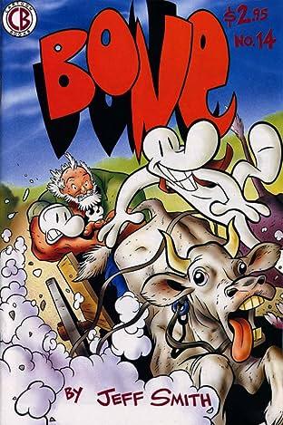 Bone #14