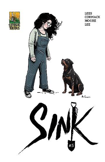 Sink #5