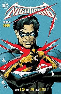 Nightwing (1996-2009) Vol. 7: Shrike
