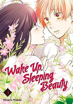 Wake Up, Sleeping Beauty Vol. 3