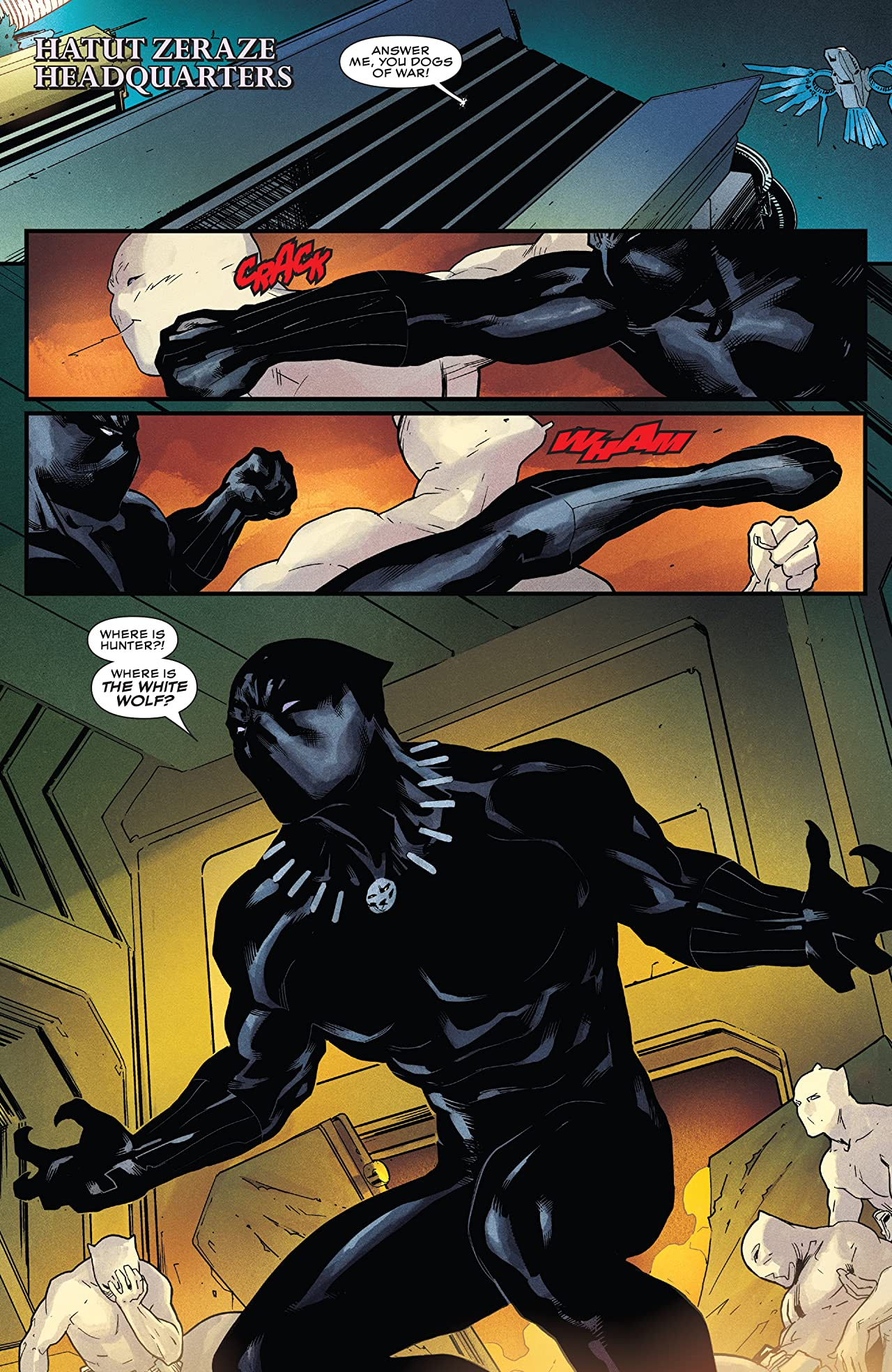 Rise of the Black Panther (2018) #5 (of 6)