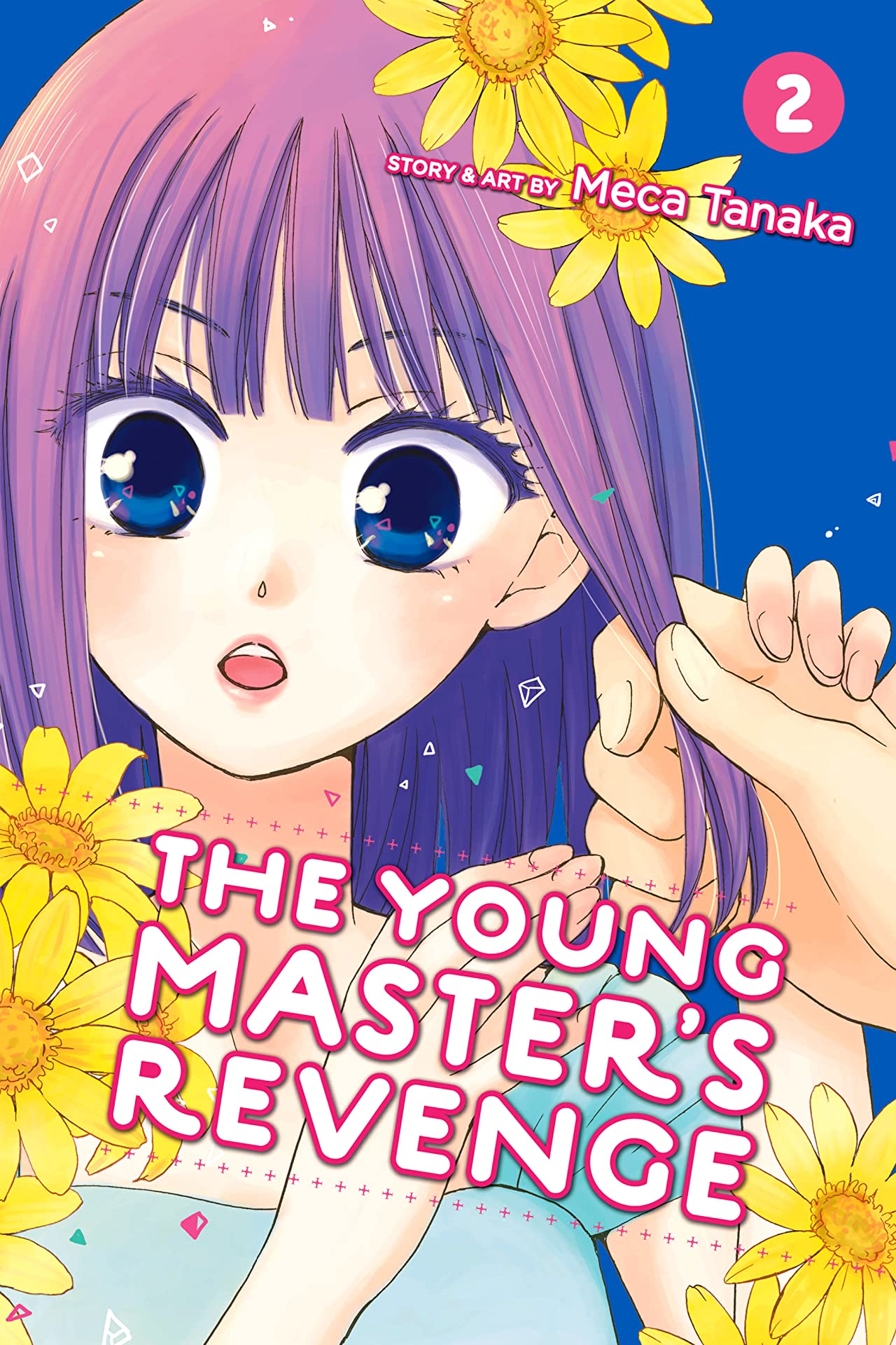 The Young Master's Revenge Tome 2
