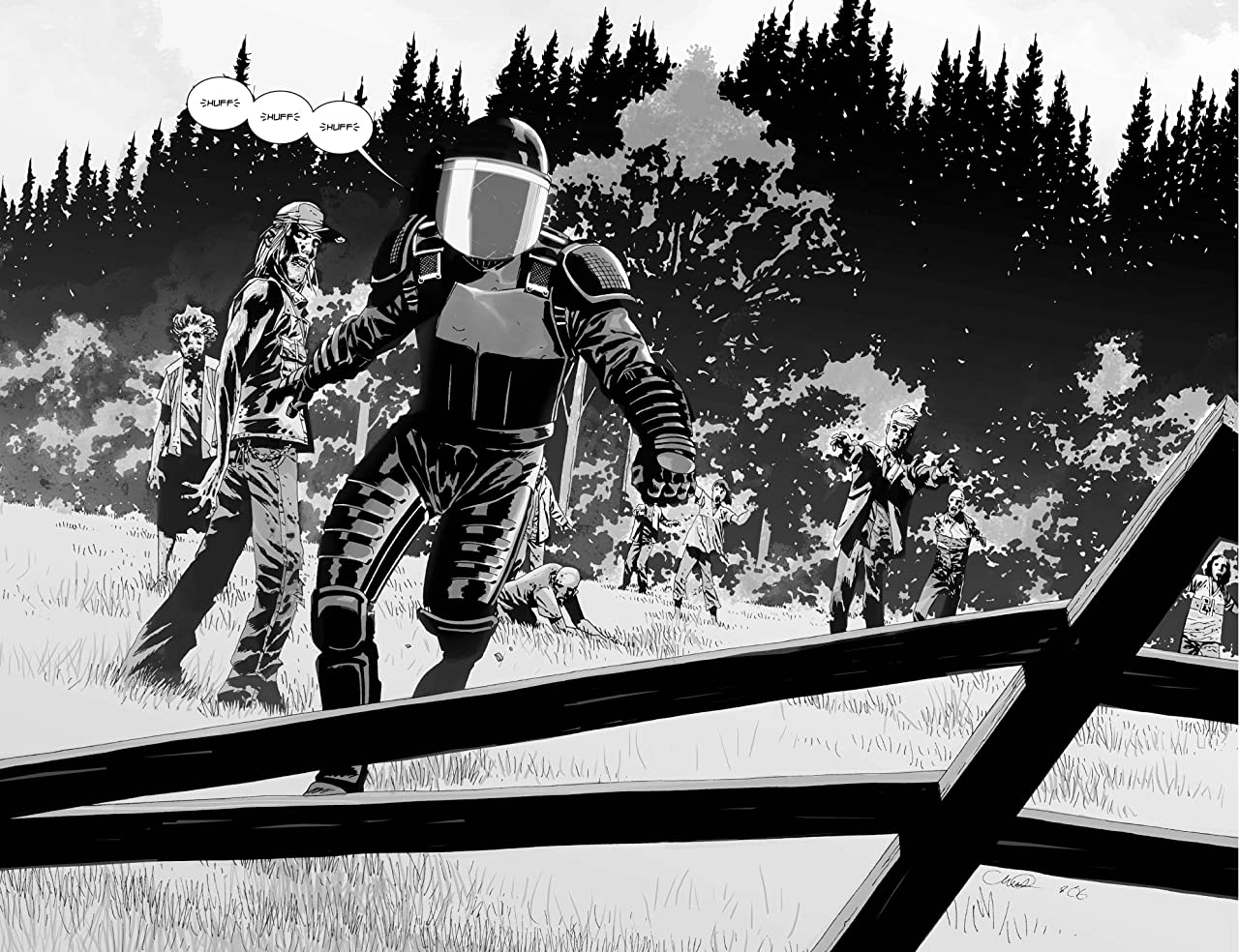 The Walking Dead #30