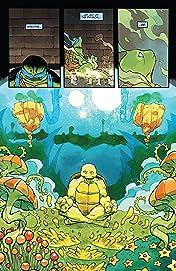 Teenage Mutant Ninja Turtles Universe #25
