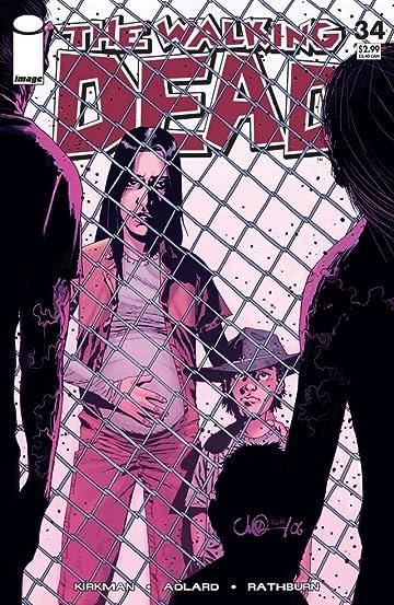 The Walking Dead #34