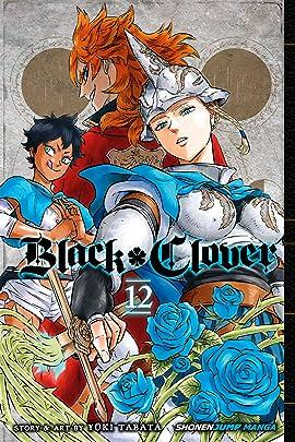 Black Clover Vol. 12