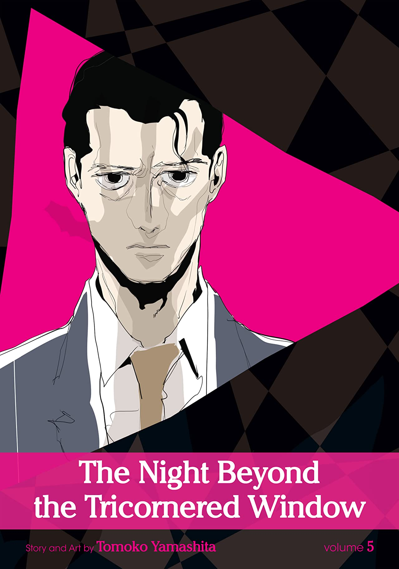 The Night Beyond the Tricornered Window Vol. 5