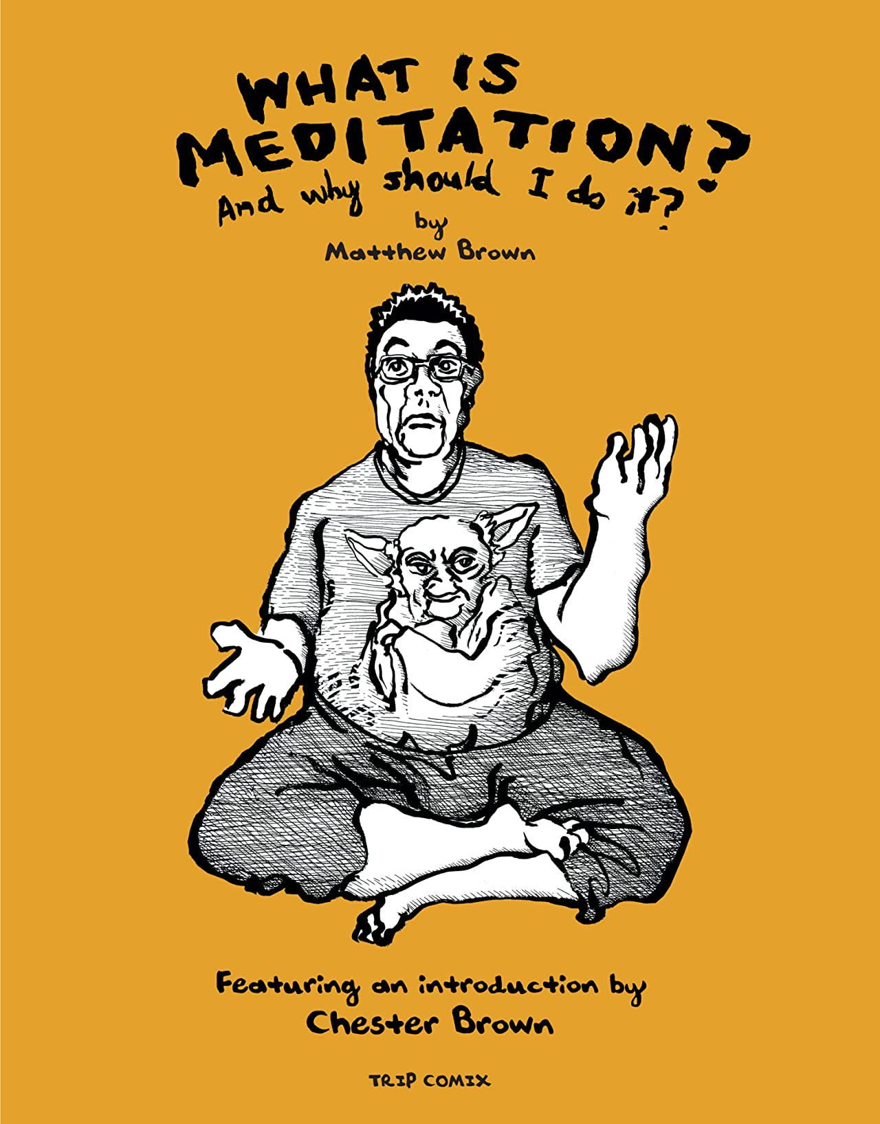 What is Meditation?: And Why Should I Do It?