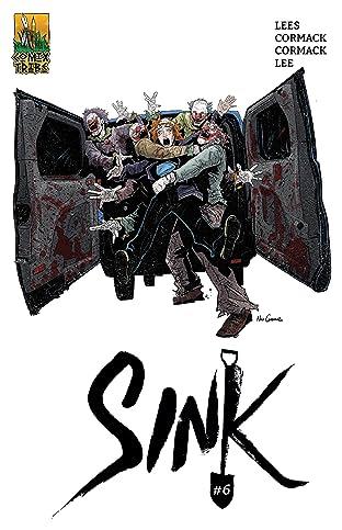 Sink #6