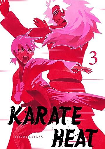 Karate Heat Vol. 3