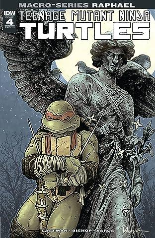 Teenage Mutant Ninja Turtles Macro-Series: Raphael